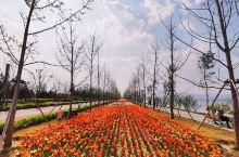 太原晋阳湖公园