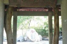 樱园 这是千佛山内中日友好的一座院落。 园内之前有几棵巨大而漂亮的樱花树,春天来了满园樱花绽放很有一