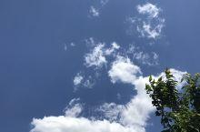 [薰衣草与蓝天白云相伴] 薰衣草花语:等待爱情;只要用力呼吸,就能看见奇迹;心心相印;浪漫;面对没有