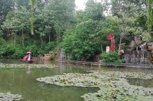 美丽乡村,水韵竹泉