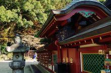 九州之旅~为了追逐秋色的尾巴,选择在12月初到九州一游,经过本州和北海道,九州明显落后一些,这个季节