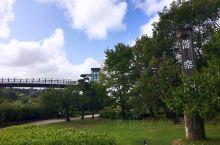 与民同乐之偕乐园          日本三大园林中,偕乐园是唯一可以免费入园的庭园,但是好文亭要20