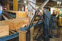 乔治亚湾罐头厂时不时可以免费参观。比如2019年11月9日12-4pm,Salmon Science