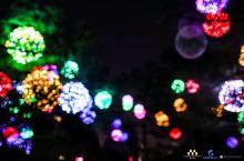 来西安,一定不能错过的大唐芙蓉园的精彩,不论是平日还是过年都是美到极致!夜景的美真的有种盛世唐朝的美
