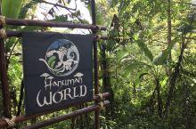 丛林飞跃选在Hanuman World进行, 一共三个项目。丛林穿越, 在国内叫滑索; 空中漫步,