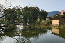 我的老家,在广西贺州的钟山县与昭平县交界的一个小村落,风景不错,空气清新!
