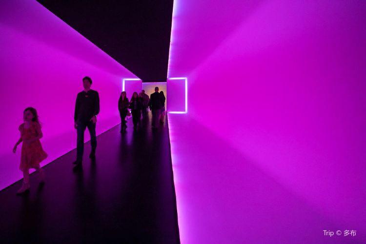 休斯頓美術館3