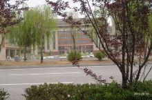 六中教学楼。