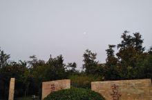 日月同辉的大自然  早上好   初秋的凉意也迎面而来  游泳垂钓的人们依然如常  也许这才是爱好吧
