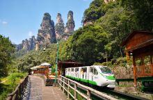 """""""人游山峡里,宛如画中游。"""" 从武陵源景区大门进去,坐景区交通车顺水而上,我们选择步行进小火车出。山"""