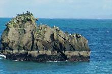 冰岛. 环岛之旅第十八日~初识西人岛,一路乘船在北冰洋上航行四个小时,很有些颠簸,但是航行中美景不断