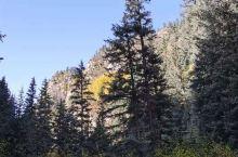 焉支山的秋 金秋的阳光温馨恬静,侗乡的秋风和煦轻柔,蓝天白云飘逸悠扬。 9月的焉支山,是一年中色彩最