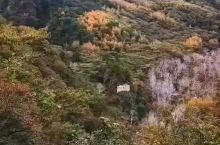 玉渡山秋色。玉渡山自然风景区位于延庆城区10公里,龙庆峡景区上游,海坨山脚下。该区地处深山,人迹罕至