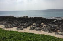 为了维持环境生态,海滩是受保护区域