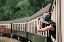 #凯恩斯探秘# 探索热带雨林的方式也可以很浪漫呀~让我们跳上库兰达观光火车 (Kuranda Sce