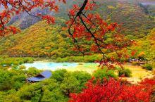 世界奇观,人间瑶池——黄龙风景名胜区  说起黄龙,其实很多朋友都不是了解,它位于四川省松潘县,面积
