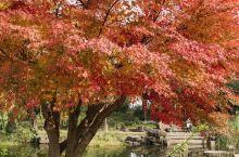 惠山古镇被认为是无锡市现存的唯一具有申报世界文化遗产资格条件的项目。古镇以地理位置独特、自然环境优美