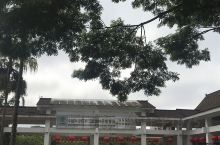 西双版纳热带植物园,巨大的王莲,传说中美丽的蓝莲花。