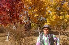 百里山水画廊。进入景区前的沿途秋色很美,进入景区后,意识到今年来得有点晚了,昨天的大风吹走了秋色。好