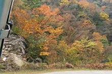 黎坪红尘峡,巴山北坡最美红叶观赏地