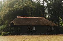 荷兰的郁金香闻名天下,又以库肯霍夫Keukenhof最为知名。观赏盛开的郁金香的时间是3月中旬至5月
