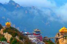 老君山,最美风景