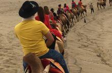 鸣沙山上驼骆声 路漫漫其修远兮 吾将上下求其所 骆驼伴我走天涯