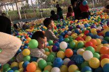 松鼠部落是一个带孩子们玩的好去处