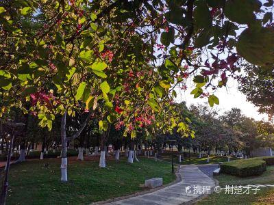 臨滄西門公園