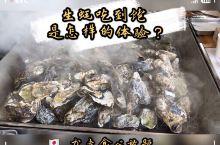 松岛被列为日本三景之一,除了美景之外这里的海鲜也很出名,特别是生蚝! 在松岛一定一定不要错过生蚝自助