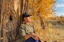 库尔勒胡杨 一个人与一群人的狂欢         库尔勒我们住在库尔勒龙行国际青年旅社,等李哥带团去