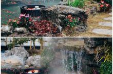 莫干山里的天然森林氧吧温泉民宿 民宿:莫干山乐在西野民宿 特色:小院子里有暖暖的温泉非常的私密浪漫
