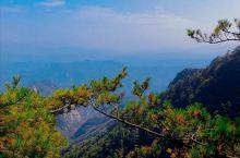 洛阳市的栾川县白云山风景区,是国家5A风景区,去年去旅行时,当地的居民说这里就素有森林养吧之称,风景