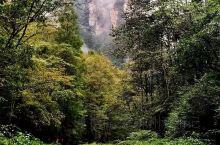 《来自五莲的诱惑:我真的想要去旅游……》  我是孤独浪子,希望我的拍拍让您有所收获。 漫游神州31载