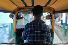 印度小哥的突突车,超级疯狂老鼠