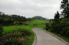 看看这里的鹤山高尔夫果岭,变化大,坡度大,所以杆数多,这点也是每次过来都让人推到怕的原因!