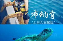 美娜多布纳肯海洋公园🐟上帝的金鱼缸🐟  ❤️美娜多,是北苏拉威西的一座小岛,北靠火山,人少景美,也是