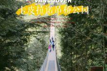 温哥华Ⅱ游走森林里的吊桥,呼吸清新空气 Capilano suspension Bridge par