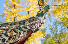 """青羊宫被誉为""""川西第一道观""""。 这里香火旺盛,道家气息很浓郁。 常来的基本都是当地老人家,所以人不算"""