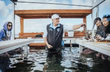 直接在海里吃生蚝是种什么体验 柯芬湾(Coffin Bay)是南澳大利亚艾尔半岛西南海岸处的一个小镇