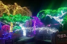 """沉静的树木园 寒冷的冬天,随着黑暗的到来,晨静树木园一盏一盏地亮起了美丽的""""星光。每年12月份开始一"""
