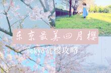 东京樱花品种以及花期,赏樱地点全方位介绍| 拍摄地点:东京 拍摄器材:佳能eos m3 快门:1/3