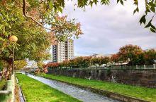 金黄的秋小镇 今天是寒露天,很多地方应该都感受到了秋气北方一点应该已经是寒气 在台湾,还是温热交织,