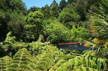 王安雷地区的石灰厂改造成了一个精致的花园,全部由挖a地区的市民提供义务服务来实现