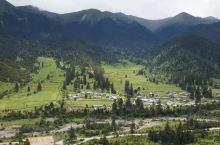 疫情过后你还想去哪里玩?我还想在春暖花开的季节去西藏鲁朗,再看看那里的山山水水,人在云中飘、人在画中