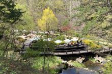翡翠花园依山而建,随着山势,各色主题的小花园也依次展现。花园的设计很有特色,既有东方园林的小巧别致,