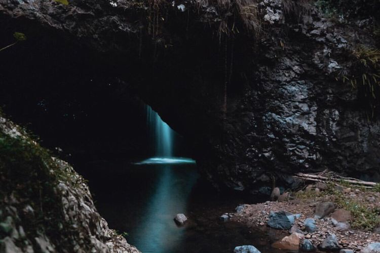 Springbrook National Park4