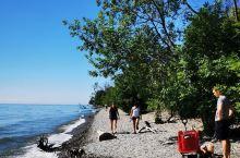 安大略湖畔小众休闲地:拉特雷湿地公园