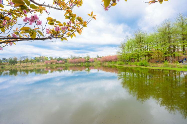 쓰밍산 지질공원 관광구4