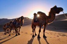 巴丹吉林沙漠经典两日游推荐! 第1天早餐后从阿右旗出发赶赴巴丹吉林庙,一路体验惊险刺激的汽车冲浪,观